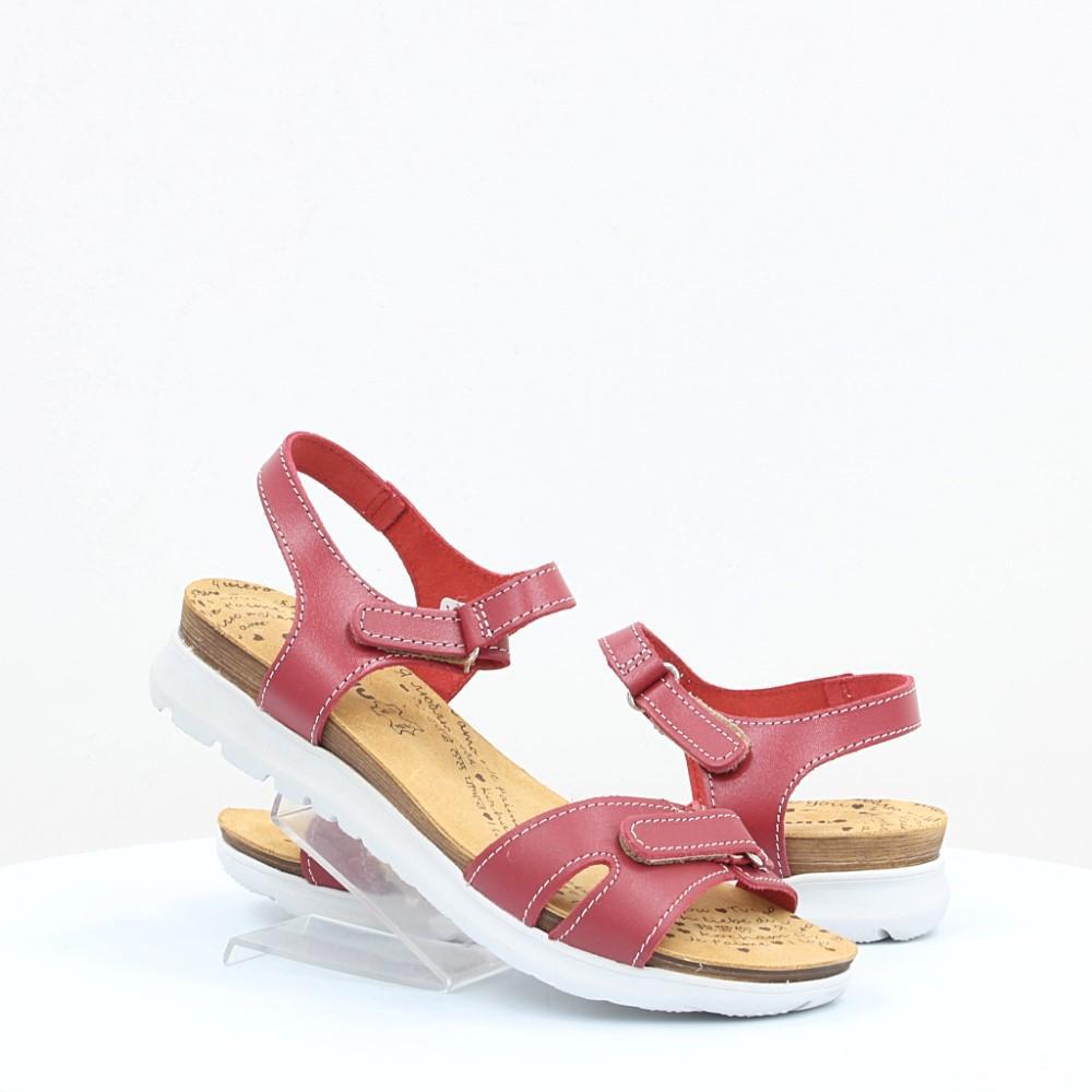 Купити жіночі босоніжки Inblu (45646) в інтернет-магазині взуття ... 4a09715909603