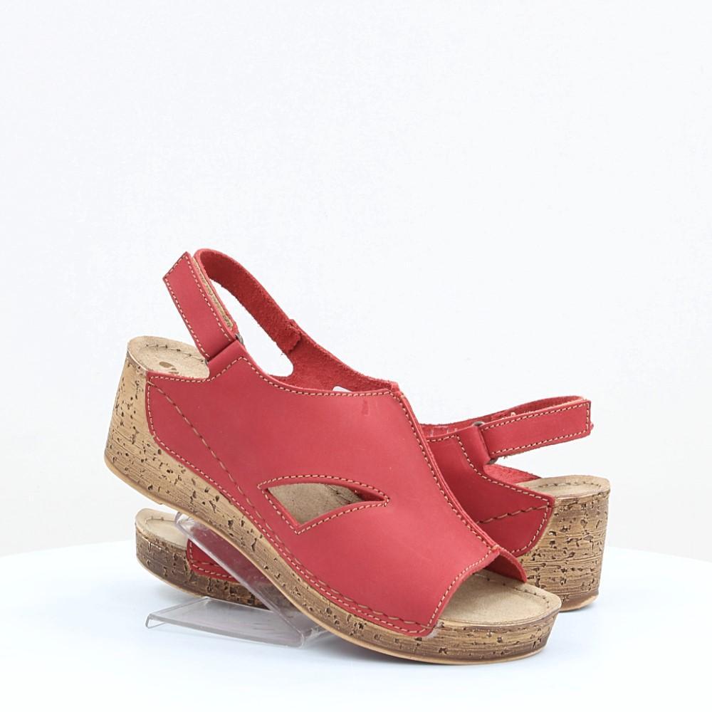Купити жіночі босоніжки Inblu (49897) в інтернет-магазині взуття ... add41a24ccdf7